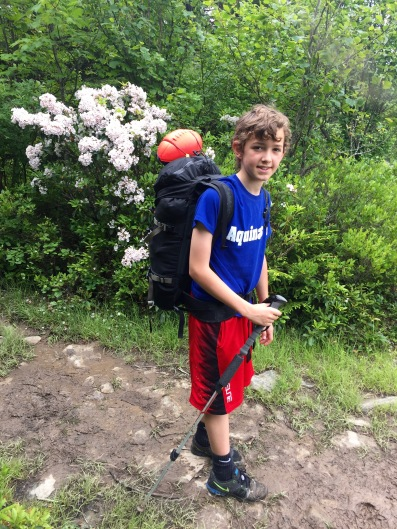 Nerf balls and mountain laurel