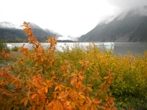 It's early August, but it's fall in Alaska