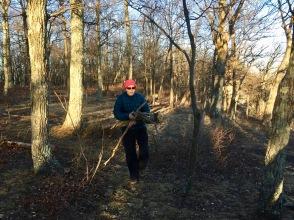 Souzz gathering wood