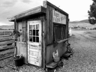 A roadside stand from back in the day. Photo by blizzardofjj.tumblr.com
