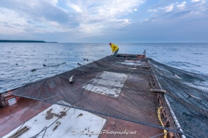 Trapnets in action. Photo courtesy of Tim Trombley, GreatLakesPhotography.net